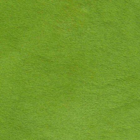 Kuhfell Teppich farbig bunt eingefärbt in Apfelgrün