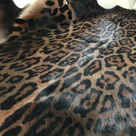 Blesbock-Fell-Teppich-Leopard