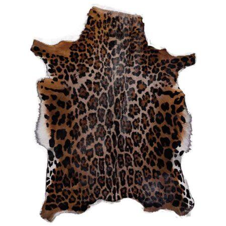 blessbock-leopard-fell-fellhof
