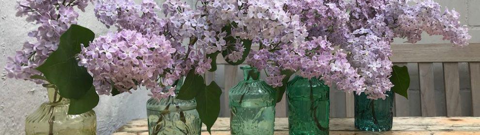 Vase VOLON, 5er-Set im Mix Grün Blau von Light & Living